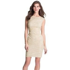 NEW David Meister Back Cutout Burnout Mesh Dress